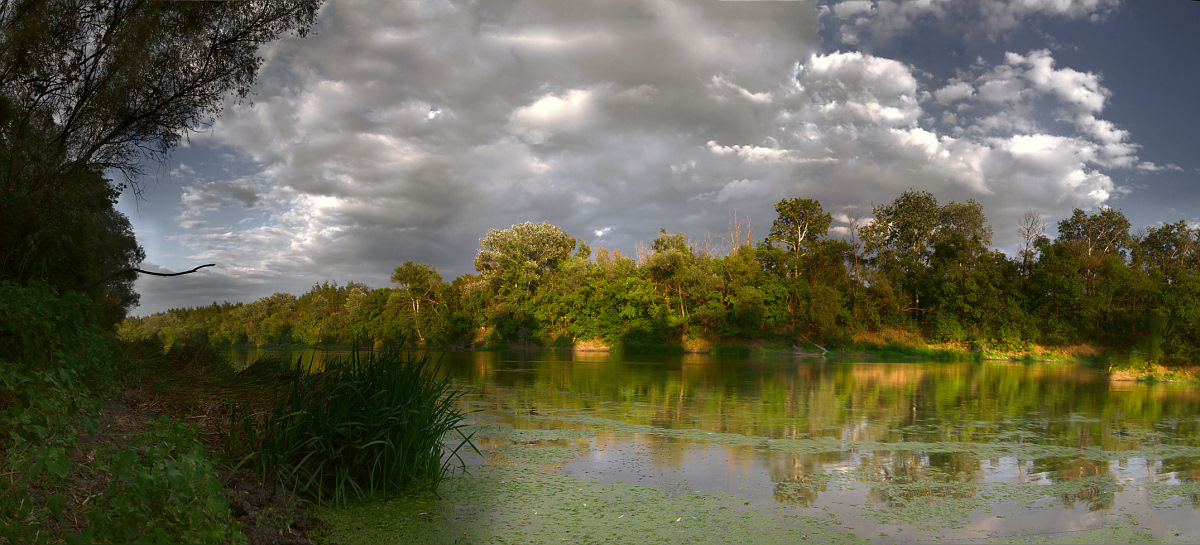Summer day on the river | landscape, nature, sky, clouds, summer, green grass, trees, water, duckweed, sunshine