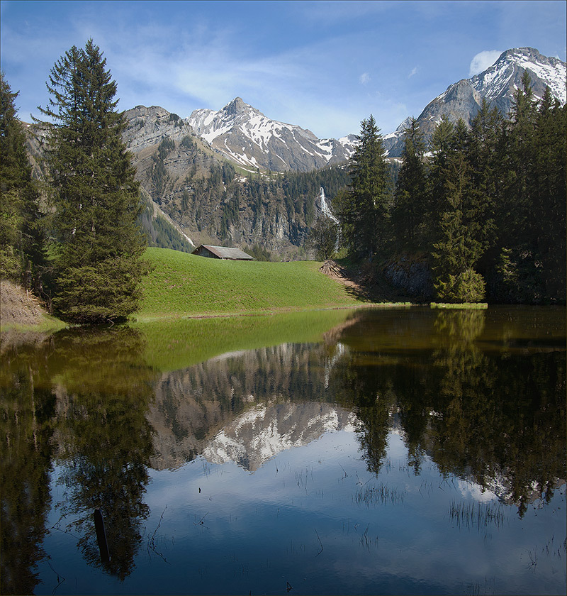 Reflection in the lake | snowy peaks, lake, spruce, mountain