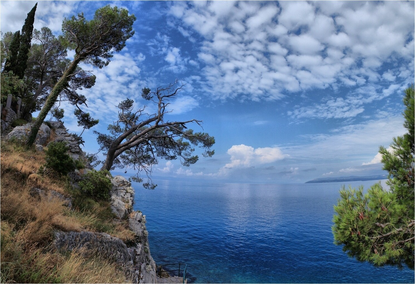 Sea and overcast | sea, overcast, cliff, spruce