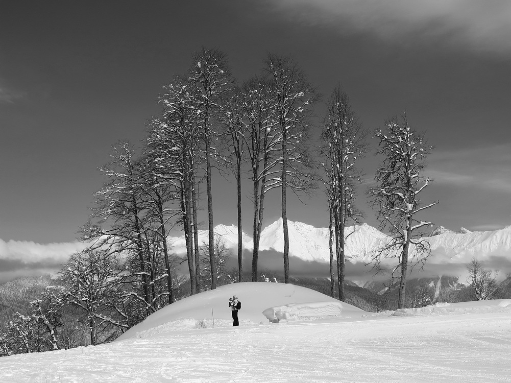 Skier on the crossroad | skier, crossroad, winter, black and white
