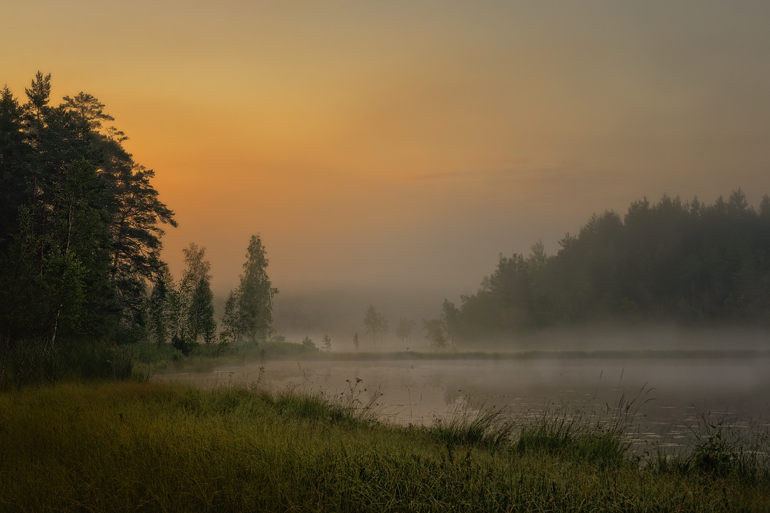 At dawn, lake | landscape, nature, outdoor, morning, dawn, fog, lake, trees, sky, grass