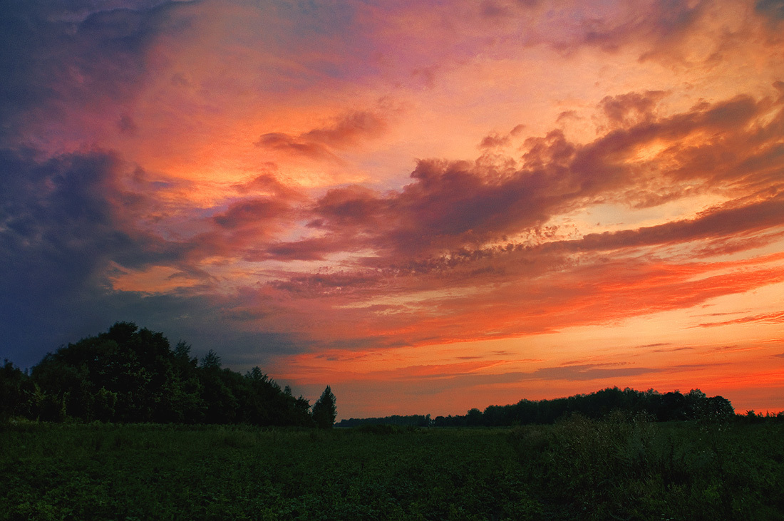 landscape, summer, sunset, green, sky, clouds, grass, forest, scarlet, evening