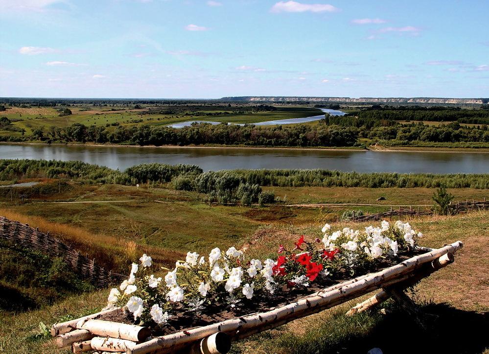 Siberian freedom | siberia, freedom, birch, river