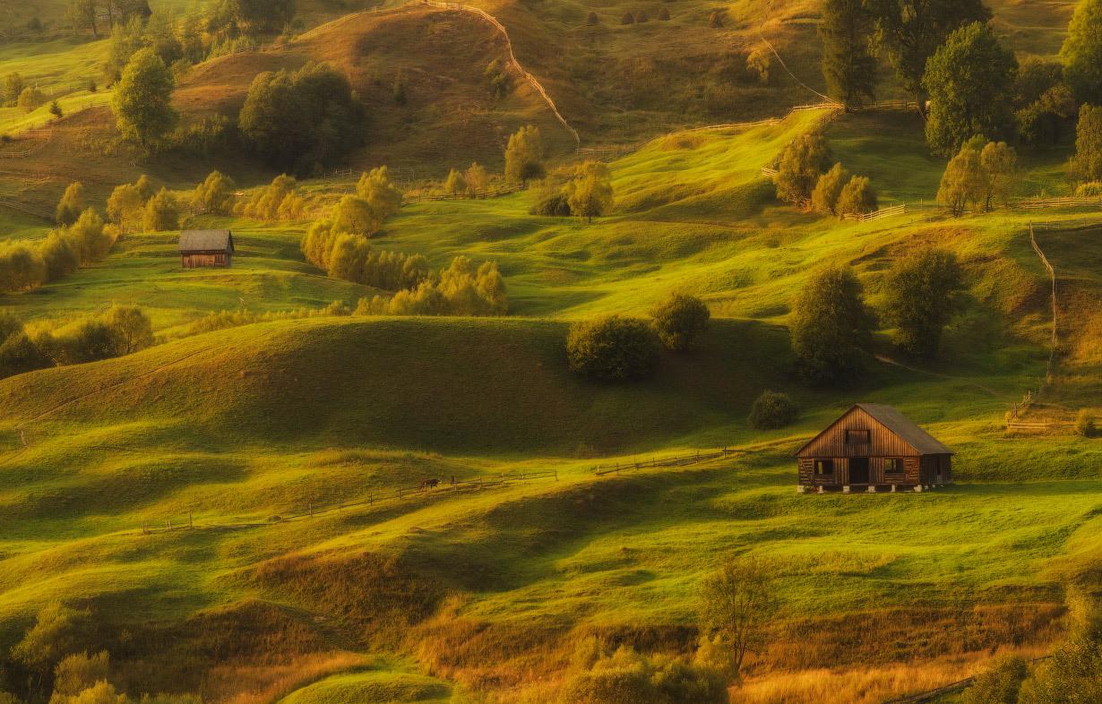Teddy world | teddy world, hills, lonely house, grass