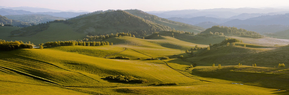 Foothills of the Altais | landscape, nature, foothills, Altais, green, grass, sunny day, trees, sky, shadow