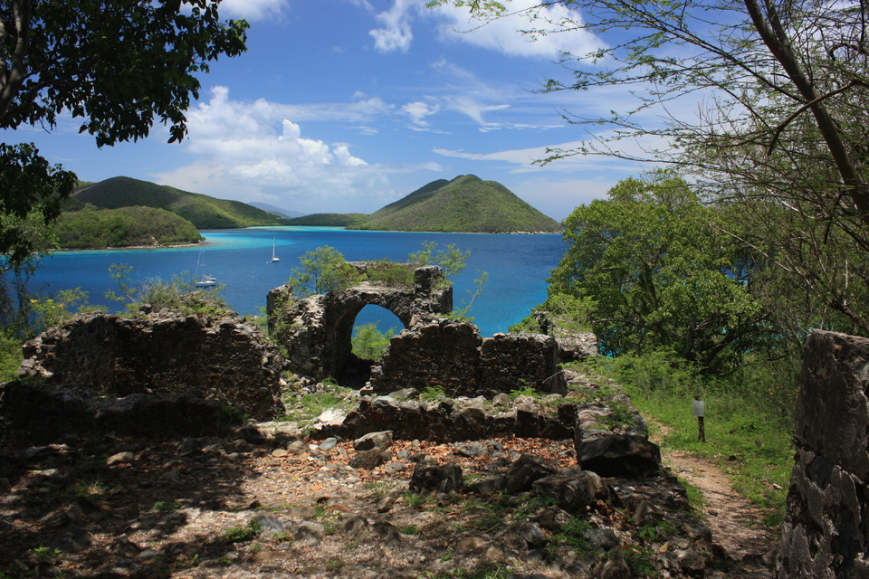 Ancient stones by the sea | stone, sea, vintage, tree