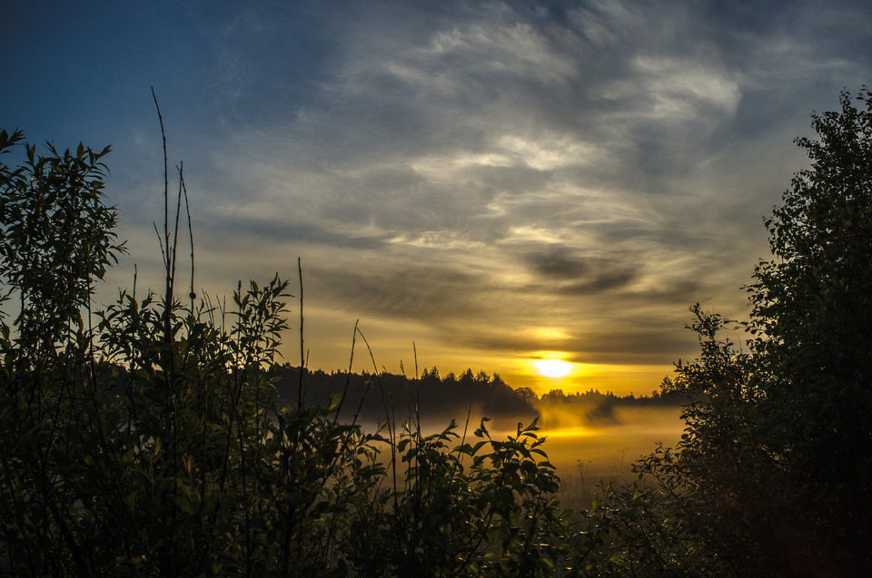 sunset near the pond | sunset, sun, pond, mist