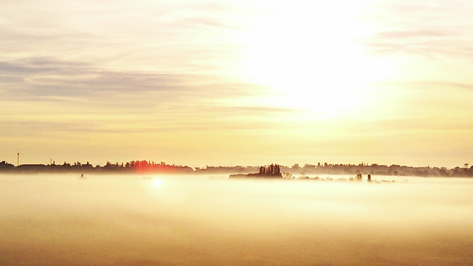 Morning, landscape | landscape, nature, morning, sky, fog, clouds, trees, sunshine, dawn, outdoor