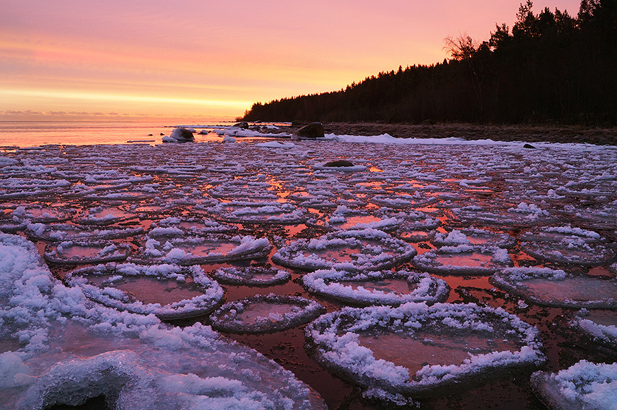 Ice flats, Ladoga | landscape, nature, Ladoga, lake, winter, snow, ice, forest, evening, sunset