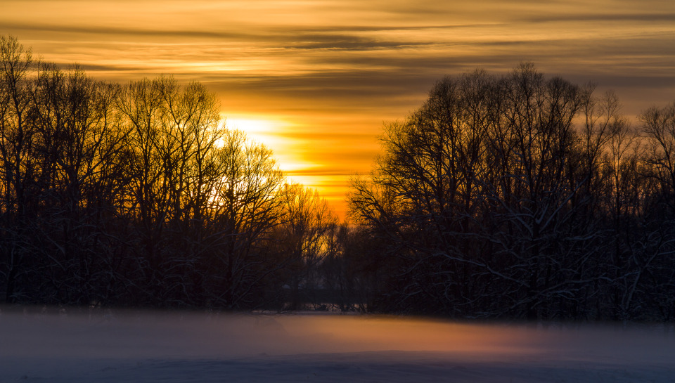 Sunset | sunset, winter, sky, trees, snow, fog, branches, orange, shine, landscape