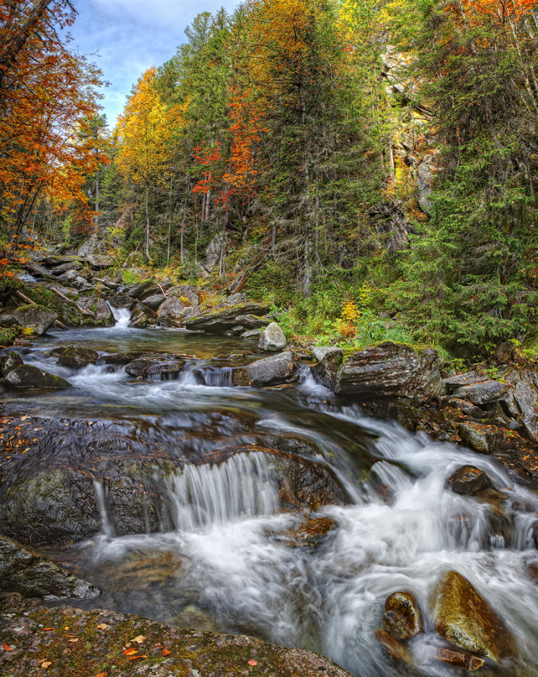 Mountain stream in autumn | landscape, nature, forest, mountain, trees, water, stones, colourful, mountain stream , autumn