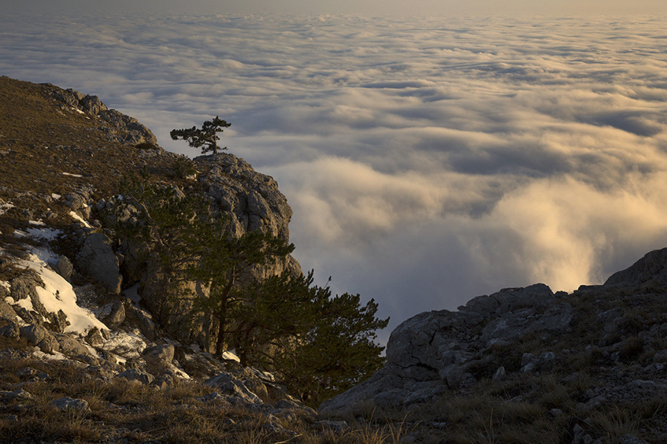 Crimea, mountains, clouds, sky, landscape, nature, tree, stones, height, cover