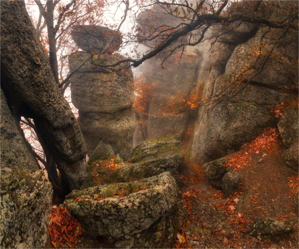 Demerji in the morning,Crimea | Demerji, Crimea, rocks, morning, path, crevice, stones, sky, tree, fog