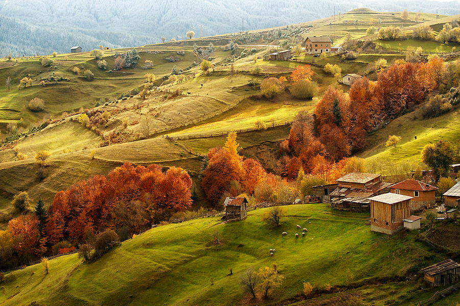 Аutumn in Rodopi mountain | Bulgaria, mountain, Rodopi, autumn